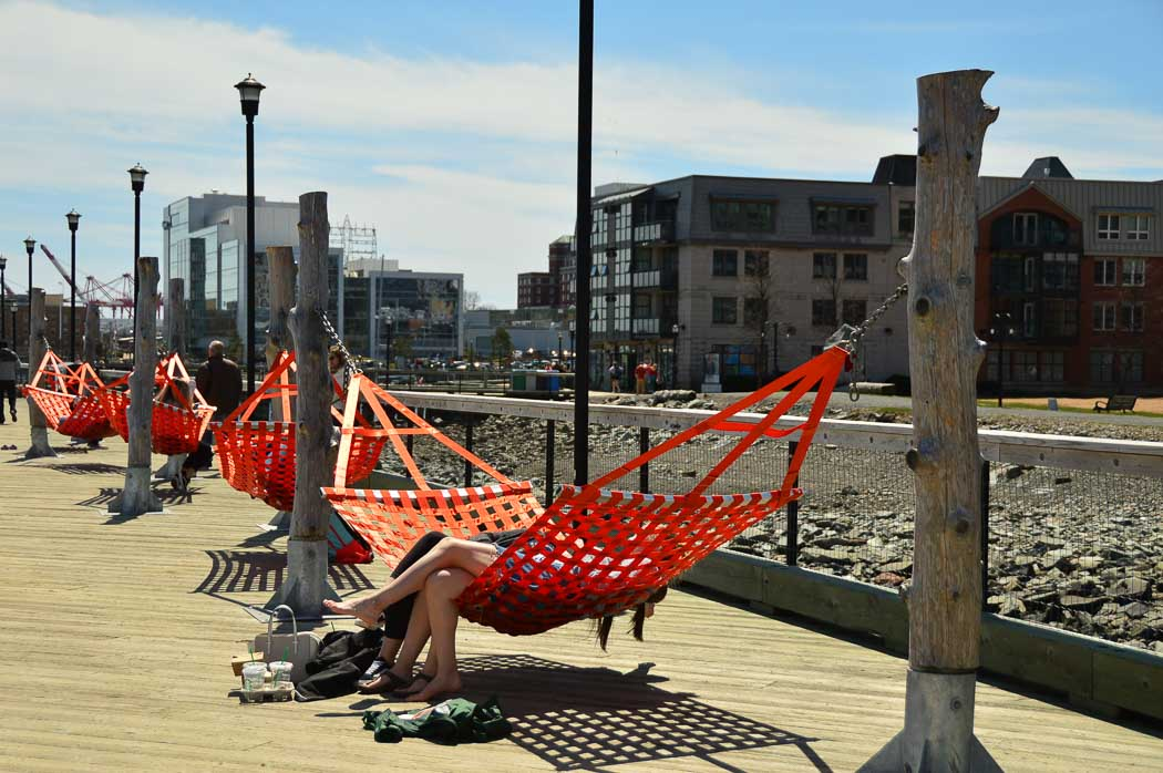 orange hammocks on the halifax waterfront