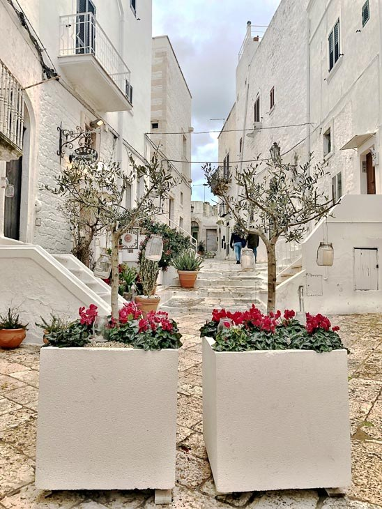 white houses and planters in Ostuni