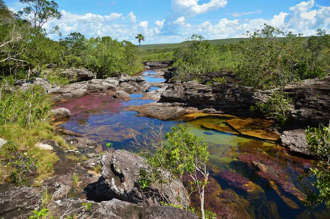 cano cristales rainbow river wide shot