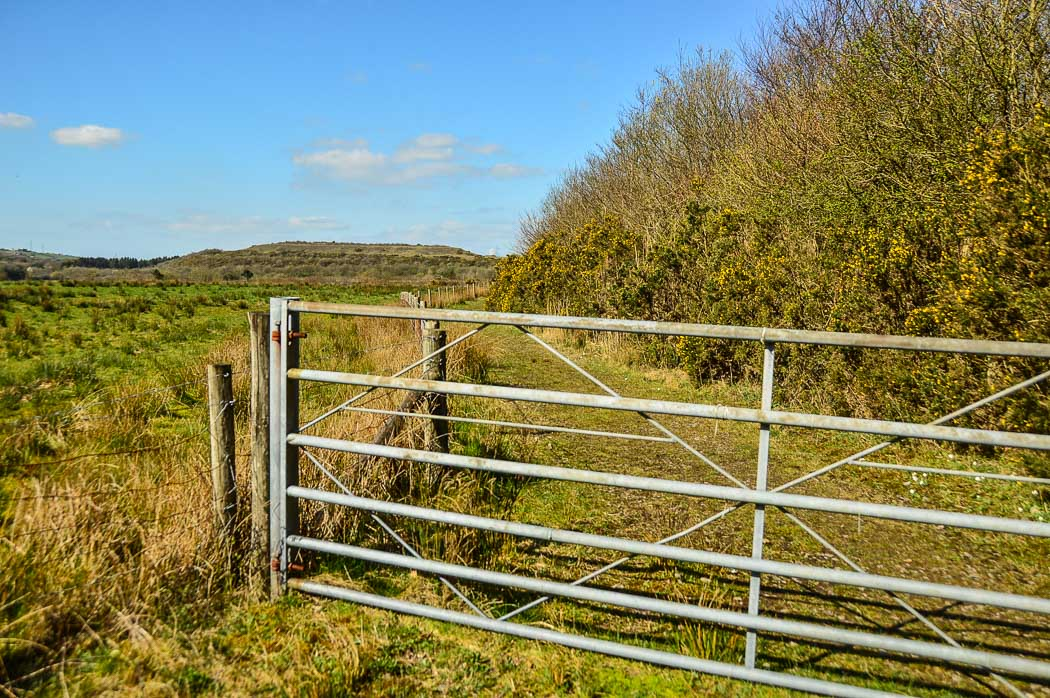 activities to do in south wales - the gate at Parc Slip Nature Reserve