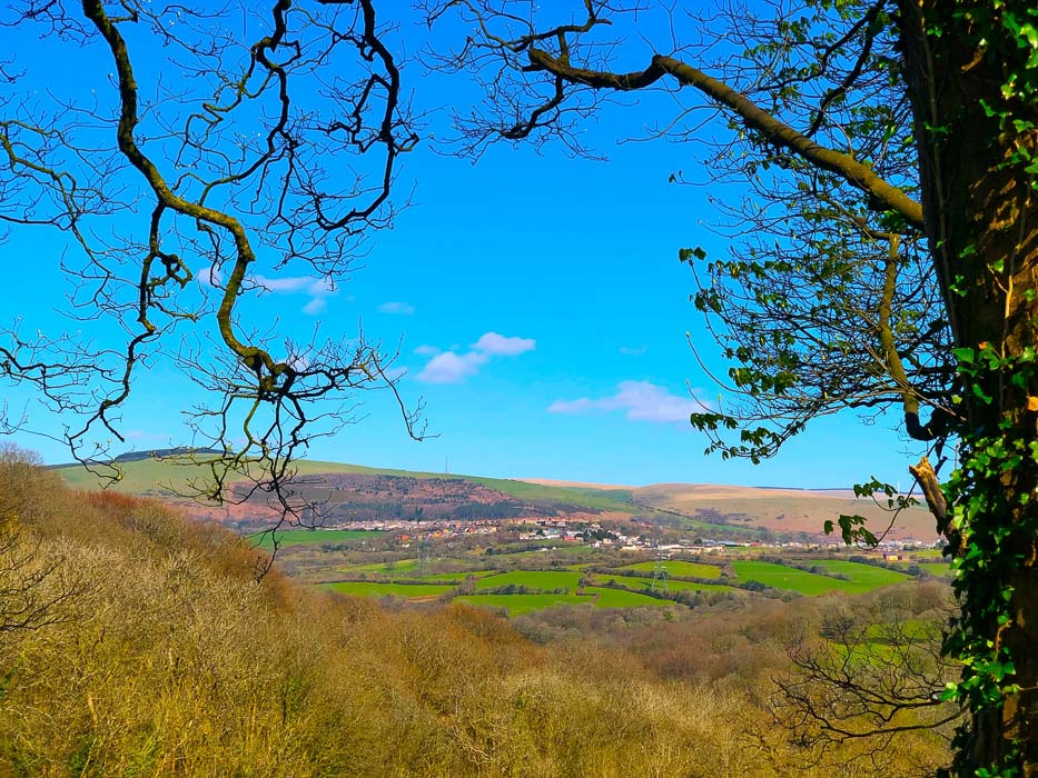 places-to-visit-in-south-wales-woodlands-bistro-view-over-wales