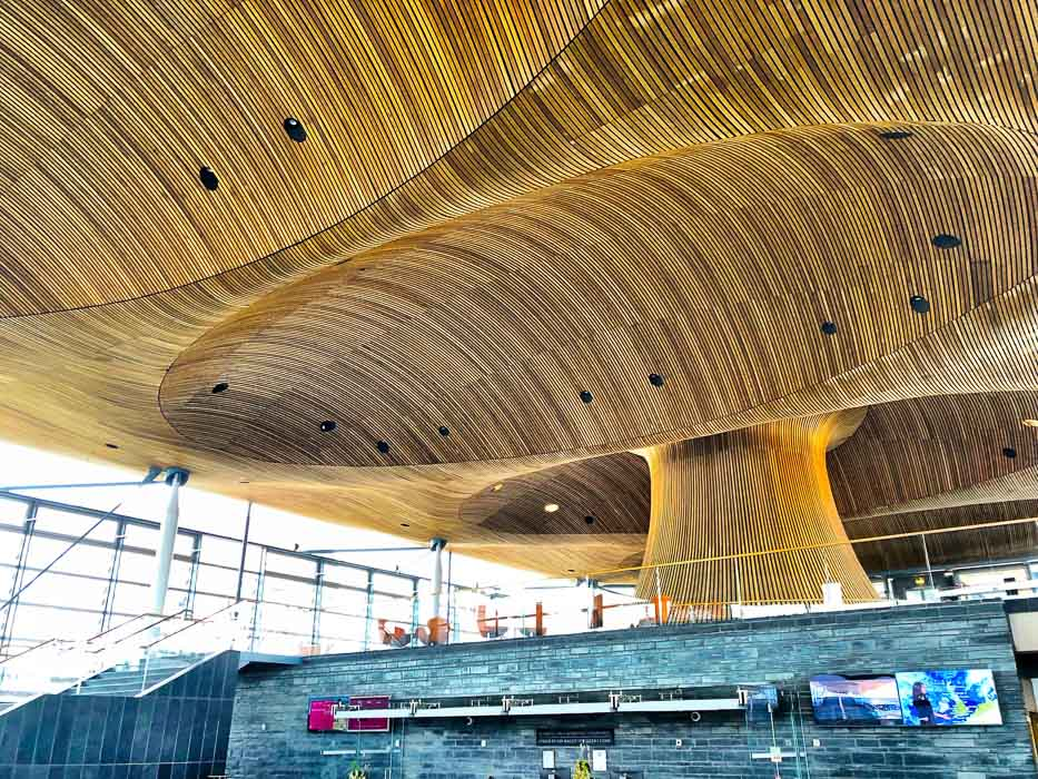Roof of the Senedd as seen from inside the building