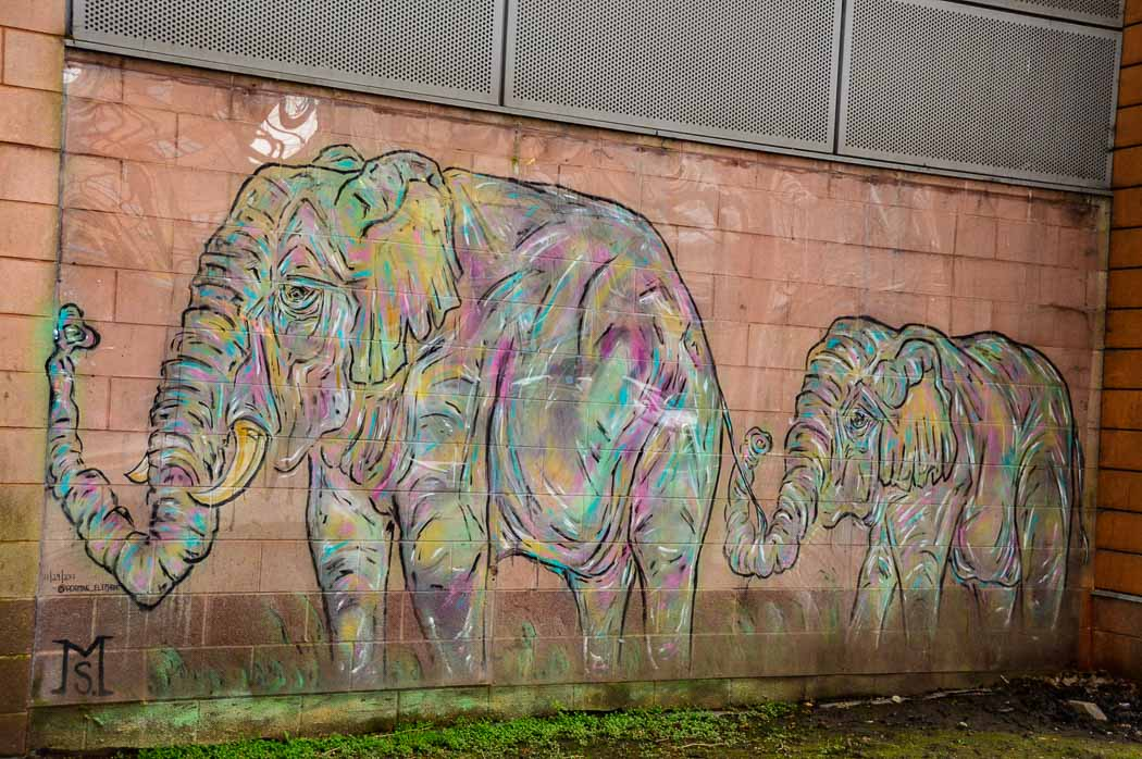 cardiff-street-art-elephants
