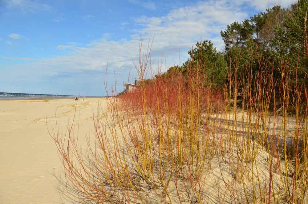 jurmala-beach