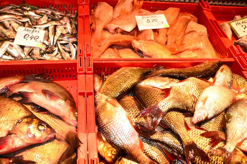 Seafood at Riga Central Market