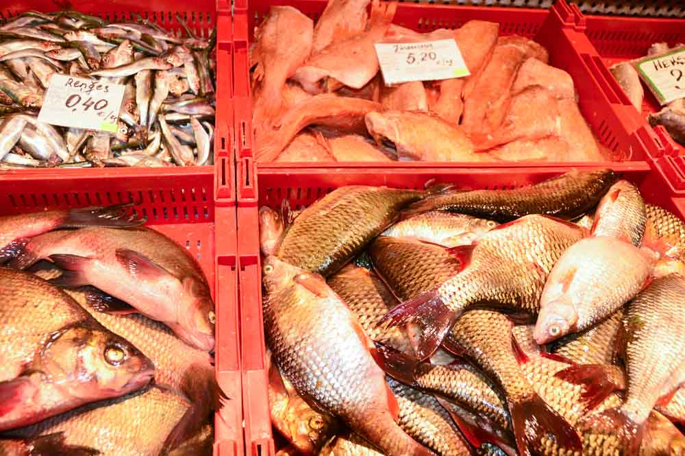 Seafood at the Riga Central Market