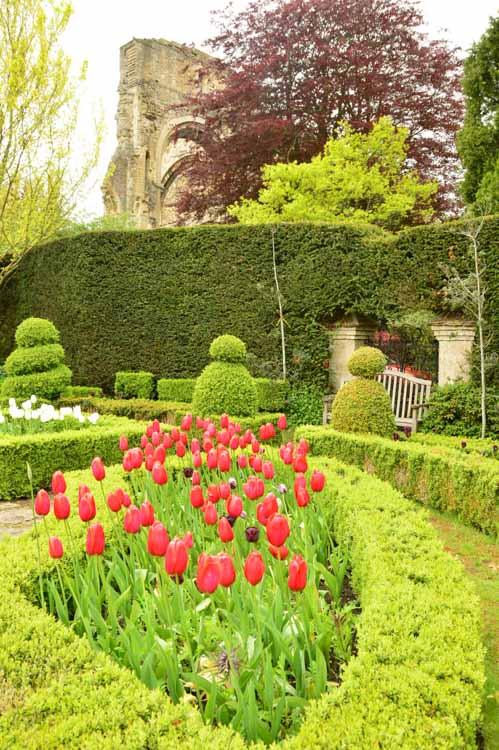 england_cotswolds_malmesbury-abbey-gardens-tulips