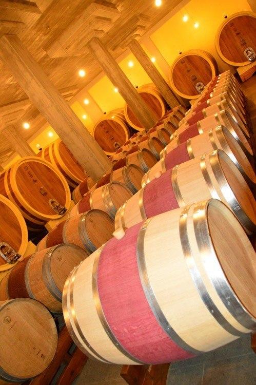 Italy_Montepulciano_altesino-barrels