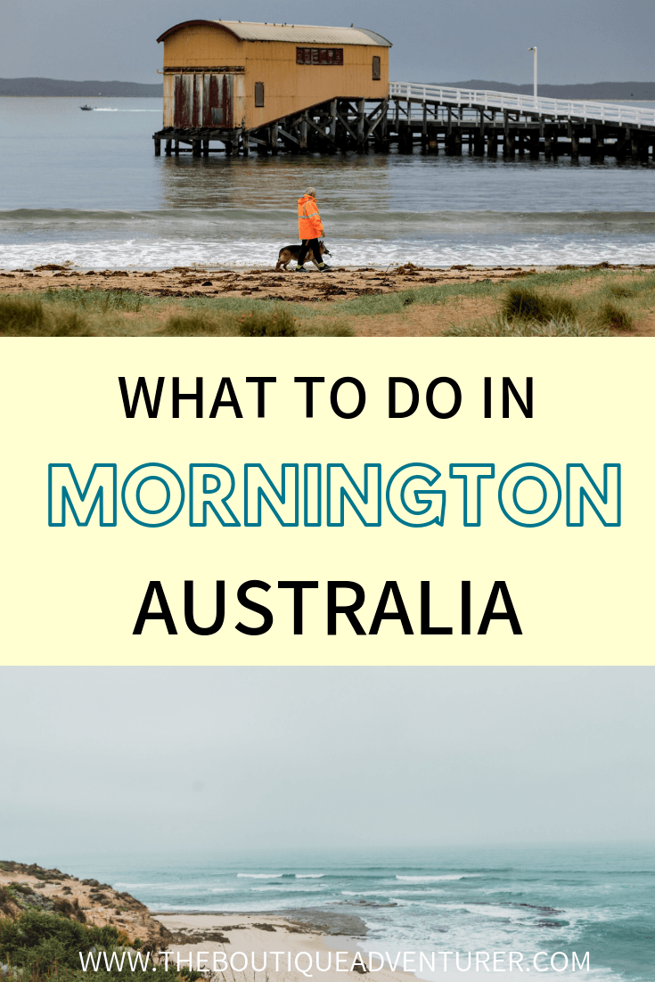 The Mornington Peninsula weekend away is the quintessential beach escape for Melbournians. It is a beautiful stretch with several very cute beach-side towns in Australia. And you can be there from Melbourne in just over an hour with good traffic! Here is your guide to the best Mornington Peninsula Attractions. #australia
