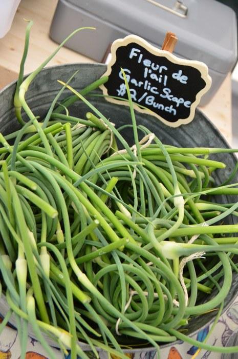 Canada_ottawa_farmers-market-beans