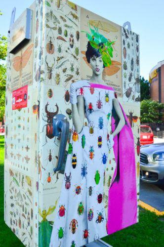 Canada_ottawa_mural-box-ants