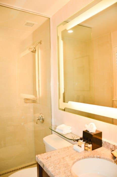 canada_new-brunswick_algonquin-bathroom