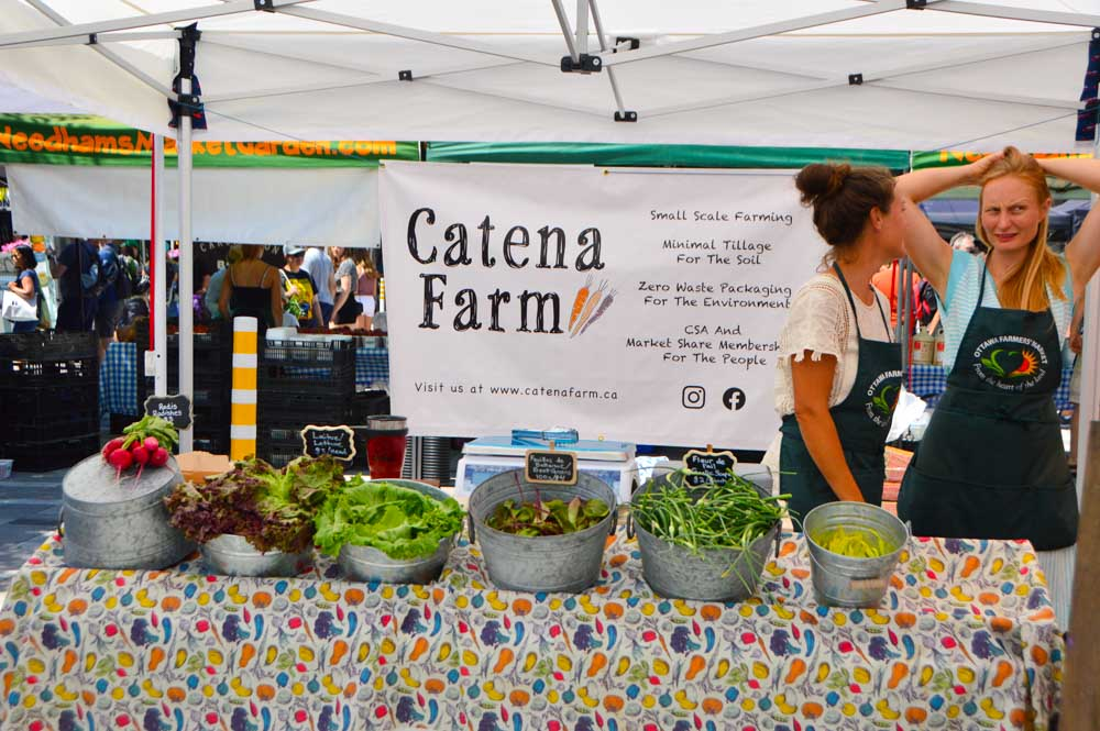 canada_ottawa_farmers-market-stand-cantena-farm