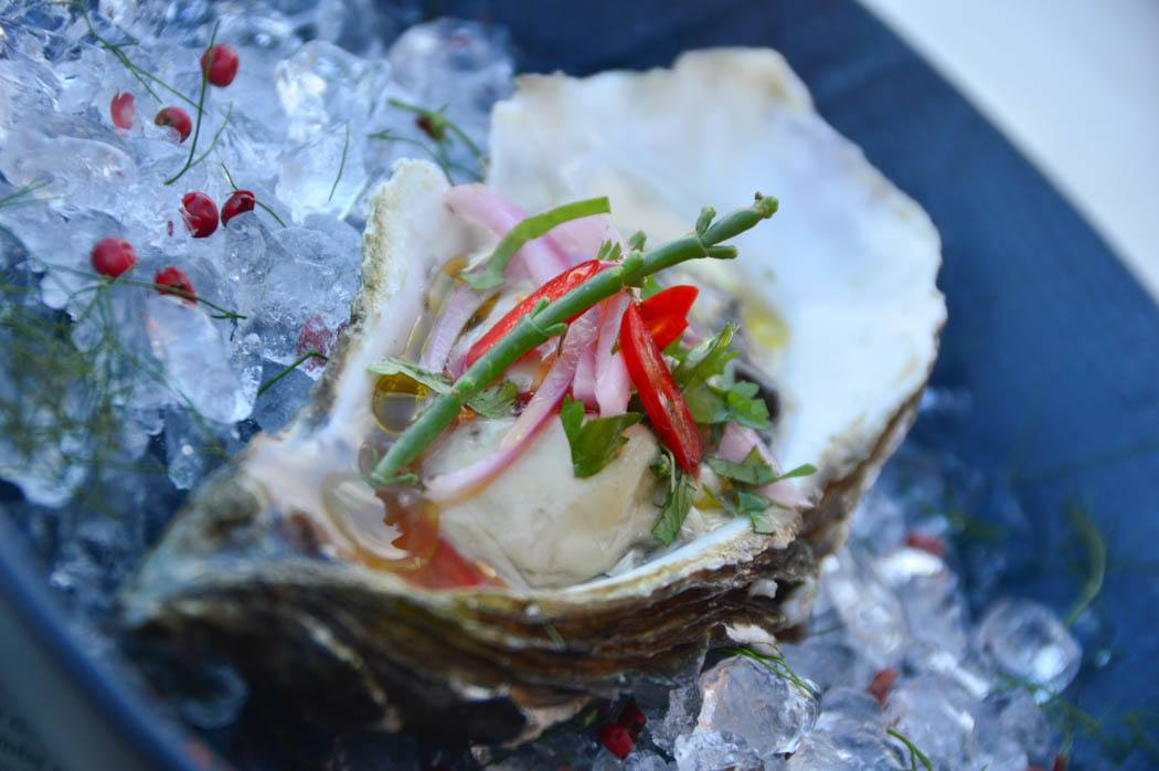 greece_paxos_loggos-vassilis-oyster