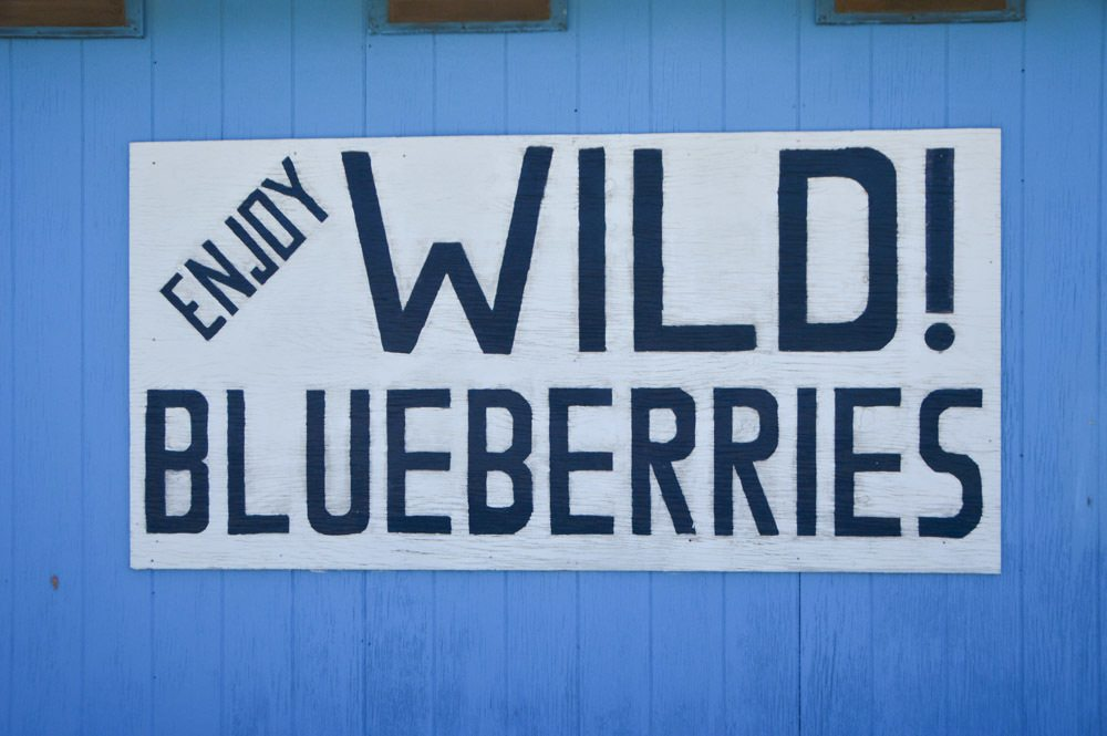 canada_new-brunswick_blueberries-sign