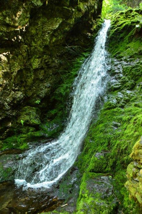 canada_new-brunswick_fundy-national-park-waterfal