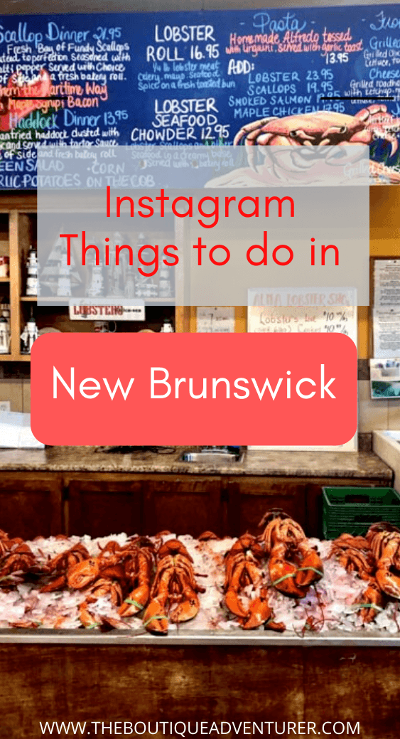 Planning a trip to New Brunswick Canada? Here is my Instagram guide to the top things to in New Brunswick – from where to eat lobster to New Brunswick national parks, whale watching, restaurants, boutique hotels, beer and much more! #NewBrunswickCanada