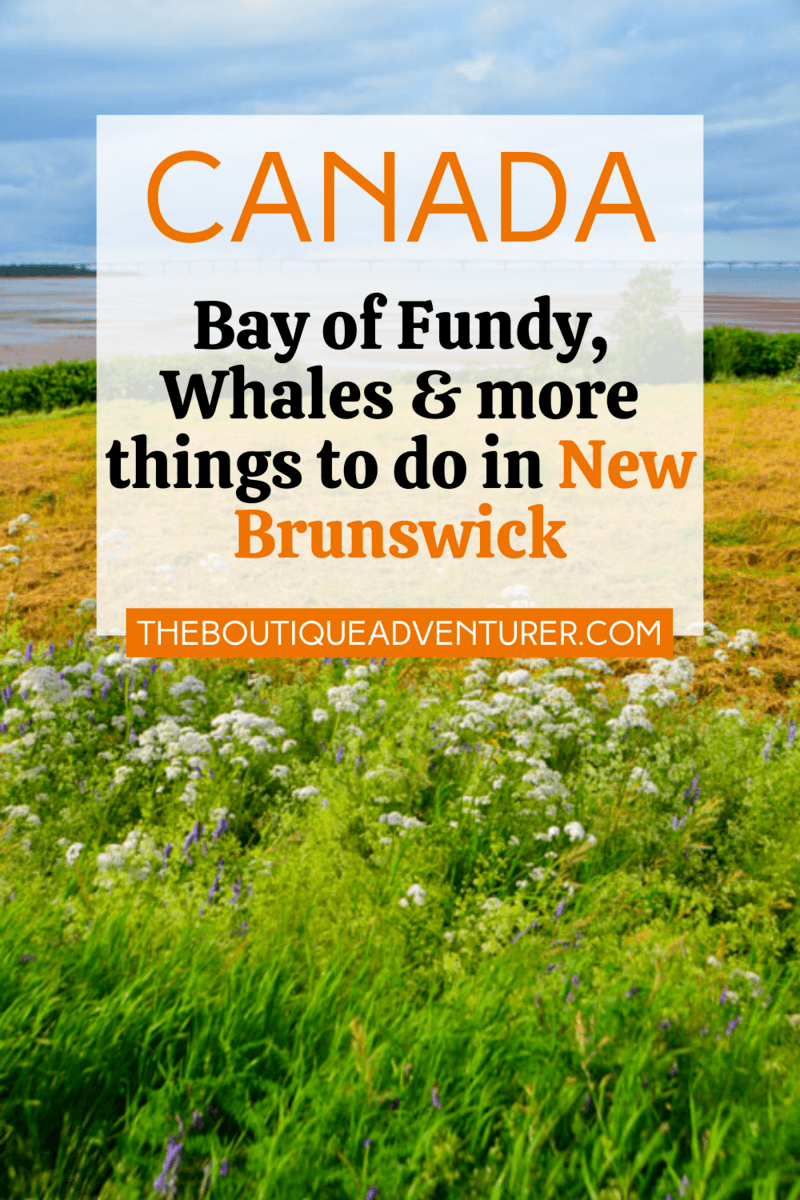 Looking for the best places to visit in New Brunswick Canada? Here are my 26 places to go in New Brunswick Canada and take some great photos – from lobsters to whale watching to the Bay of Fundy to the best New Brunswick National Parks – plus boutique hotels, great restaurants and more! #NewBrunswickCanadaplacestovisit