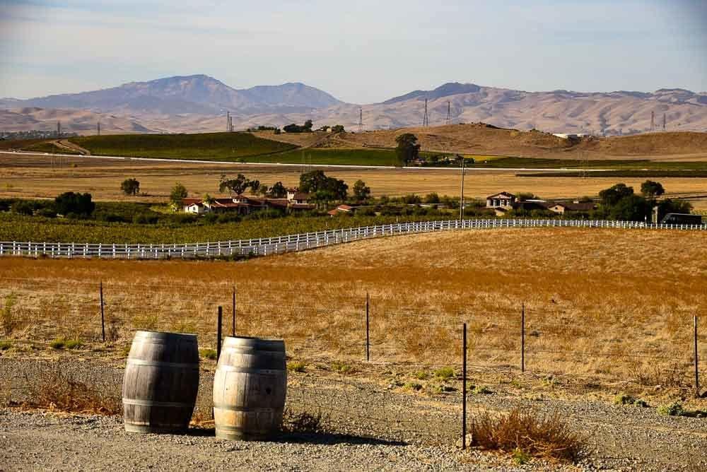 california_livermore_mcgrail-vineyard-view