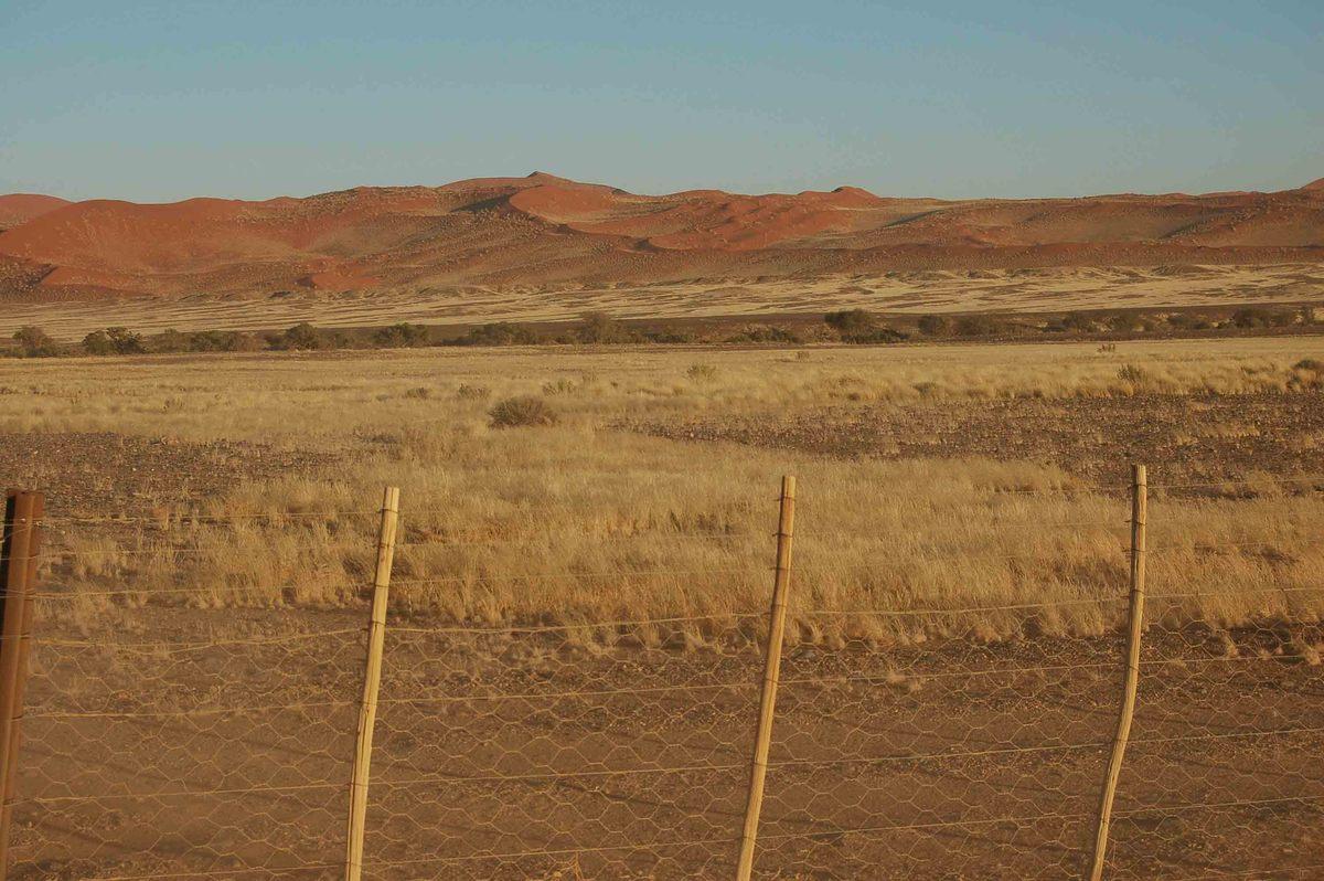 Namibia_sossusvlei-fence