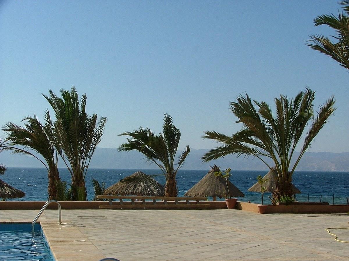 jordan-aqaba-palm-trees-sea