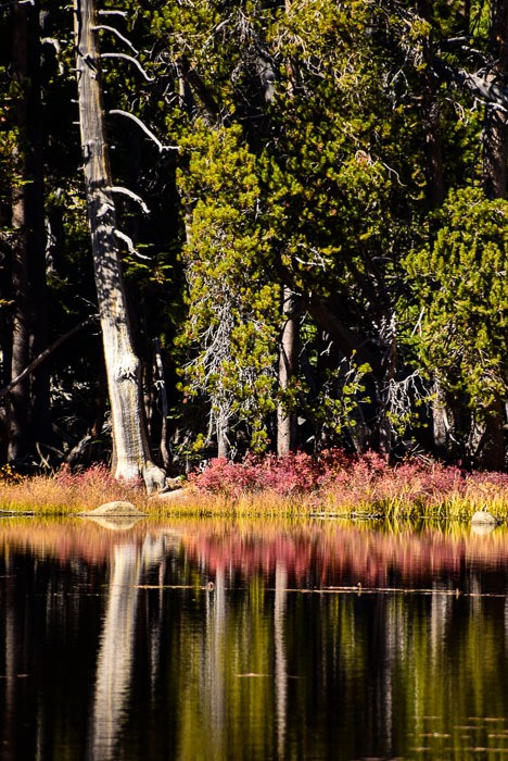 california_yosemite_siesta-lake-3