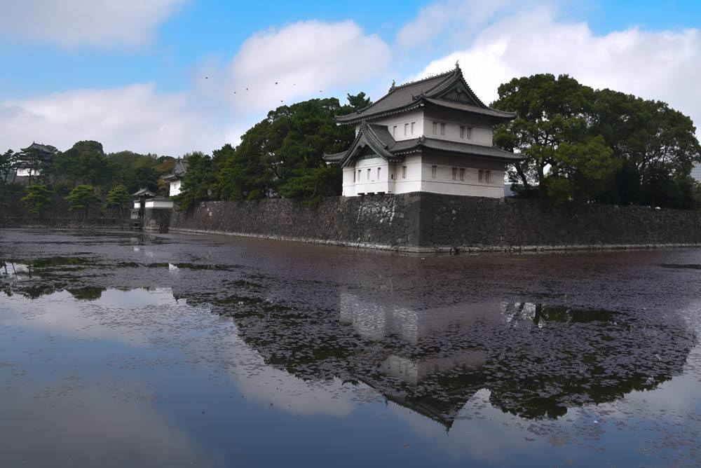 One Day in Tokyo: Hidden Gems & Classics
