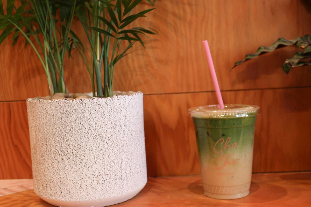new_york_lower_manhattan_matcha-cup-plant