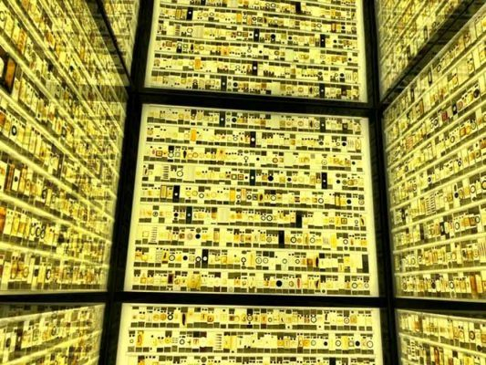 Tiny photos against a light wall in the Grant Museum