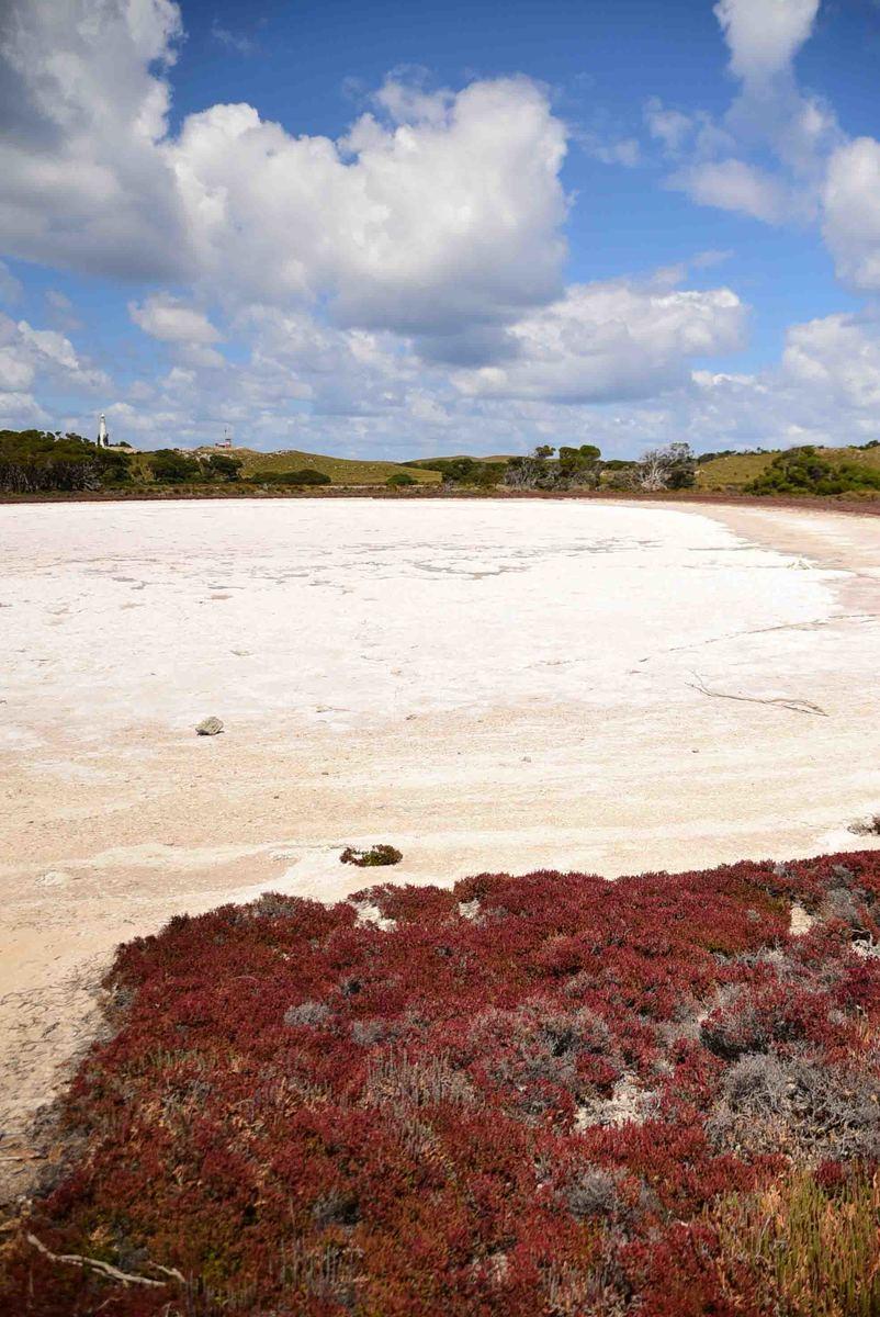 Perth_rottnest_island_pink-lake-2