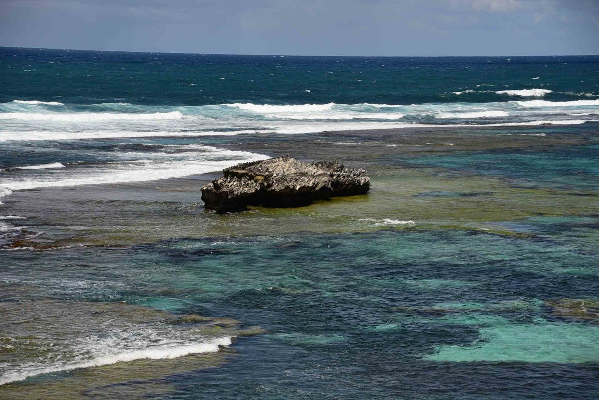Perth_rottnest_island_rock-in-water