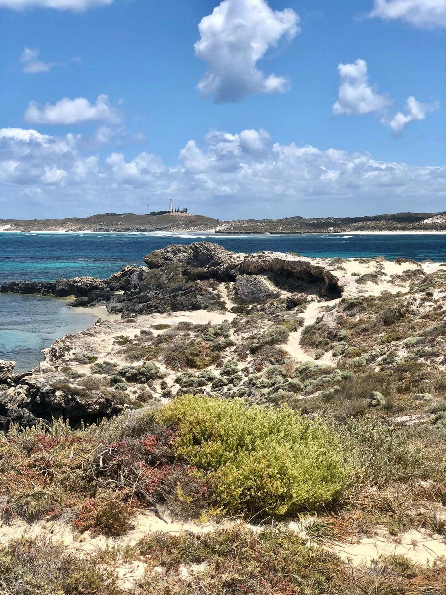 Perth_rottnest_island_salmon-bay