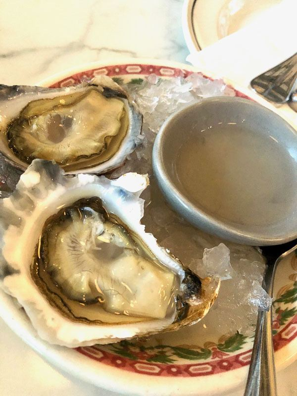 oysters on a plate with a light sauce
