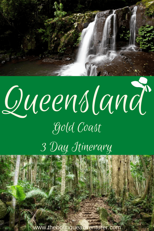 The Gold Coast Hinterland is one of Queensland's hidden gems. This beautiful rainforest region features waterfalls, wineries and stunning hikes. Start planning your trip with my Gold Coast Itinerary for Adults. #goldcoastqueensland #goldcoastparadise