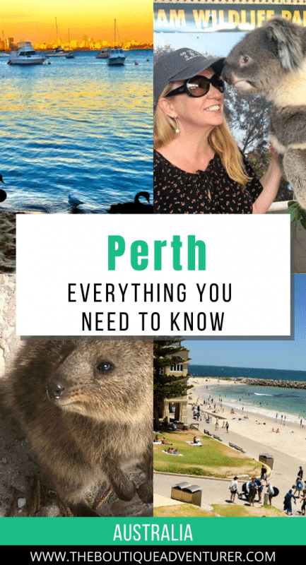 mix of images from perth australia - matilda bay at sunset, woman with koala bear, quokka and cottesloe beach