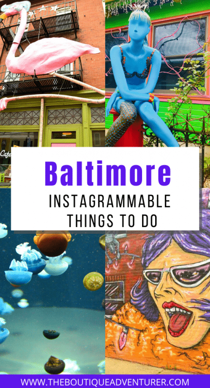 colourful images from baltimore - paper moon diner, flamingo in hampden, acquarium and street art