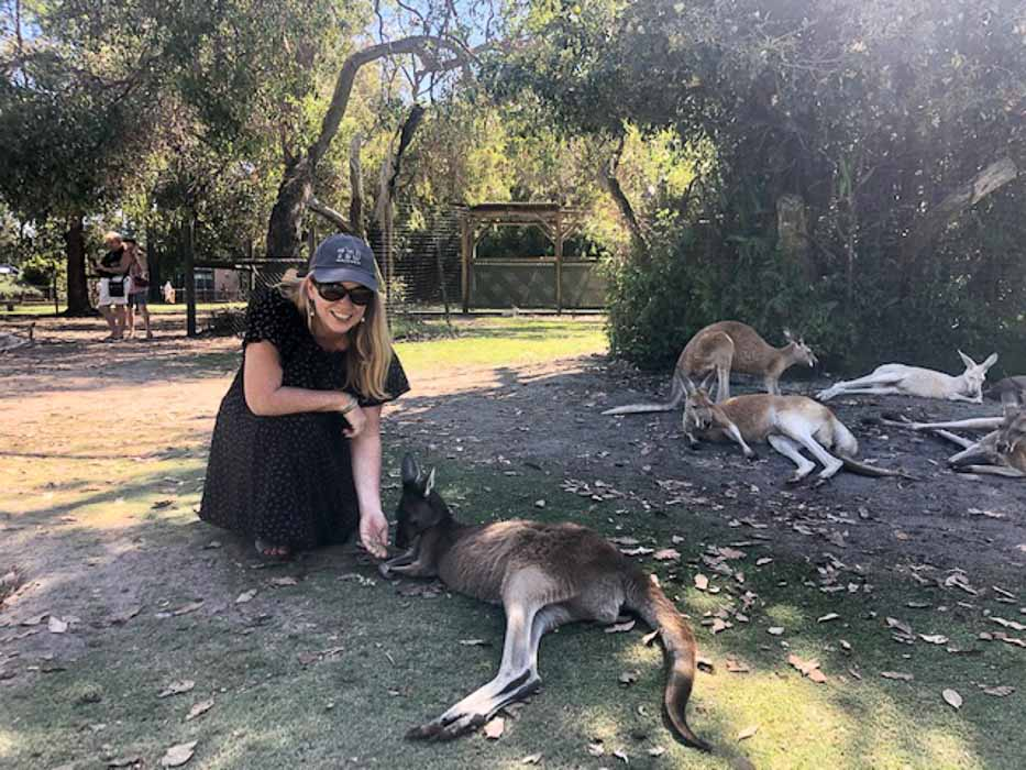 perth-caversham-kangaroos