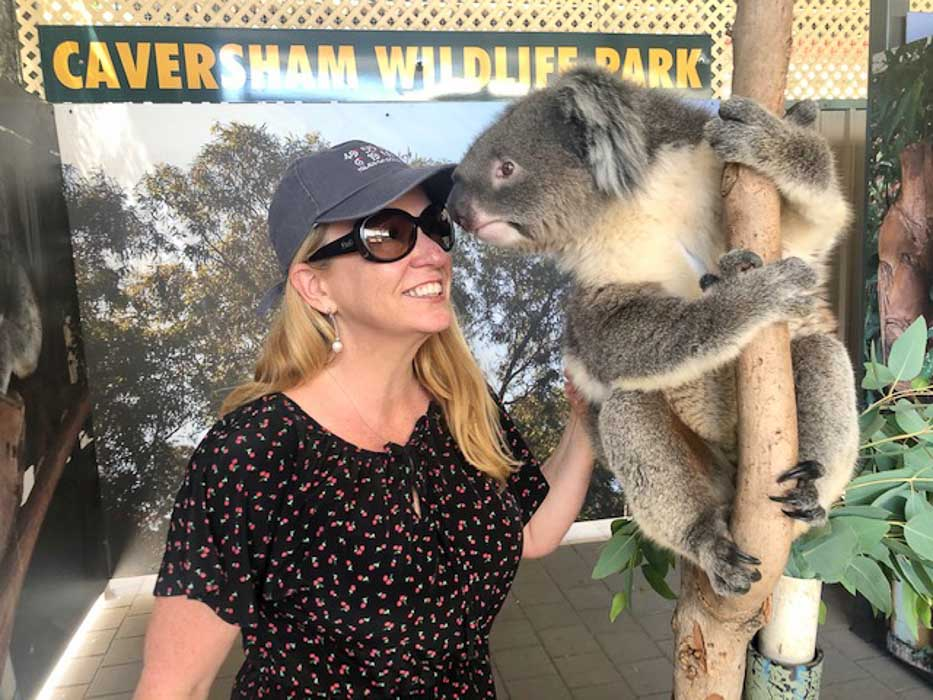 perth-caversham-koala
