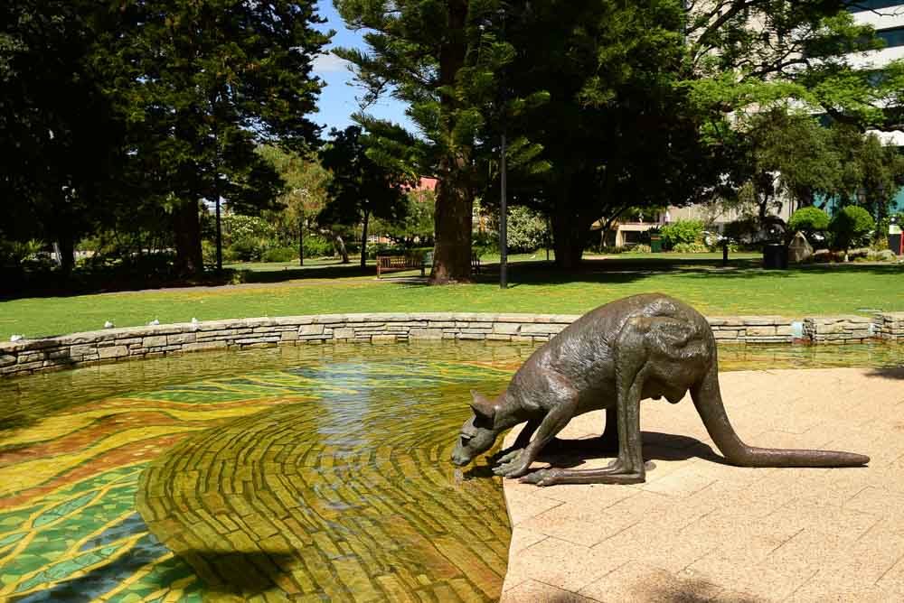 perth-cbd-kangaroo-drinking-sculpture
