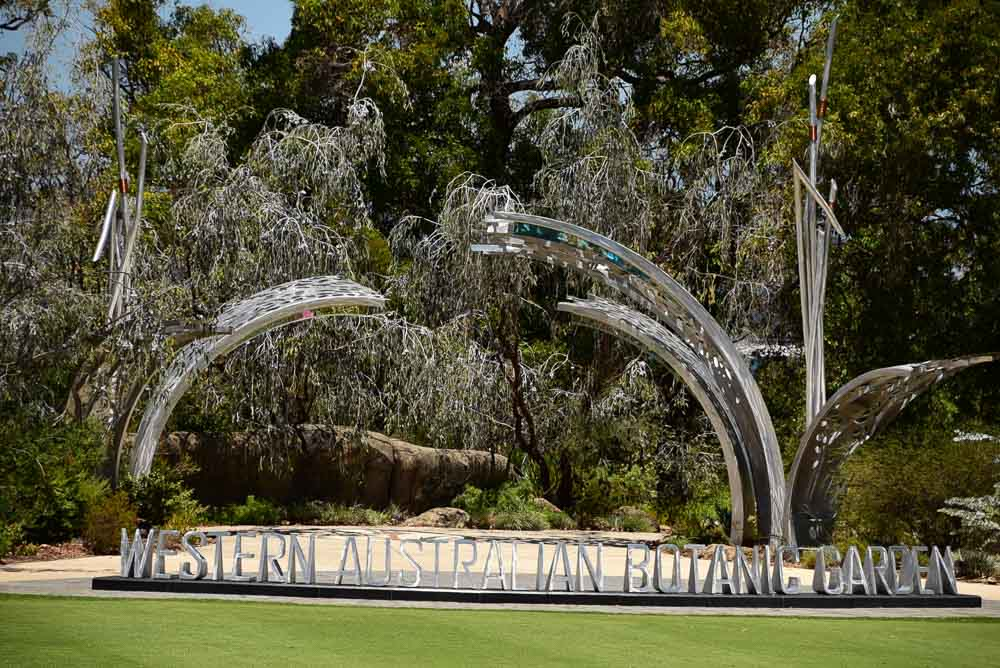 perth_kings-park_sculpture