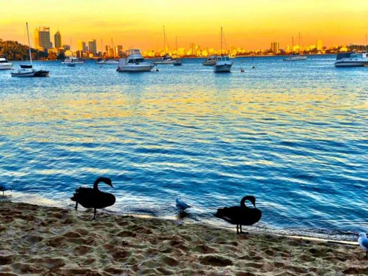perth_matilda-bay-swans-and-skyline