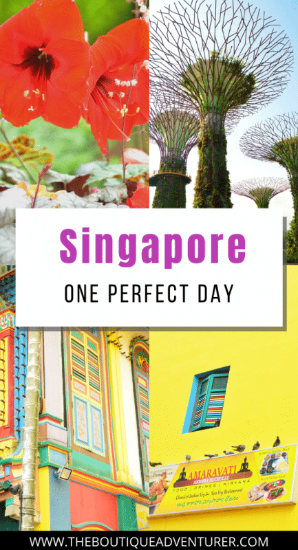 various photos of singapore