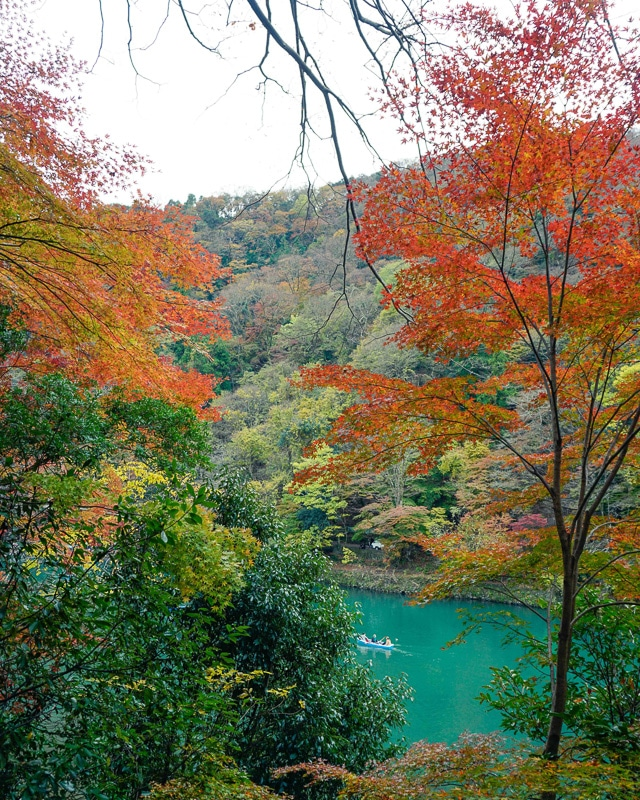 autumnal trees with lake in kyoto japan
