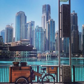 bicycle and cart in front of water and dubai syscrapers