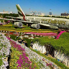 dubai miracle garden emirates plane