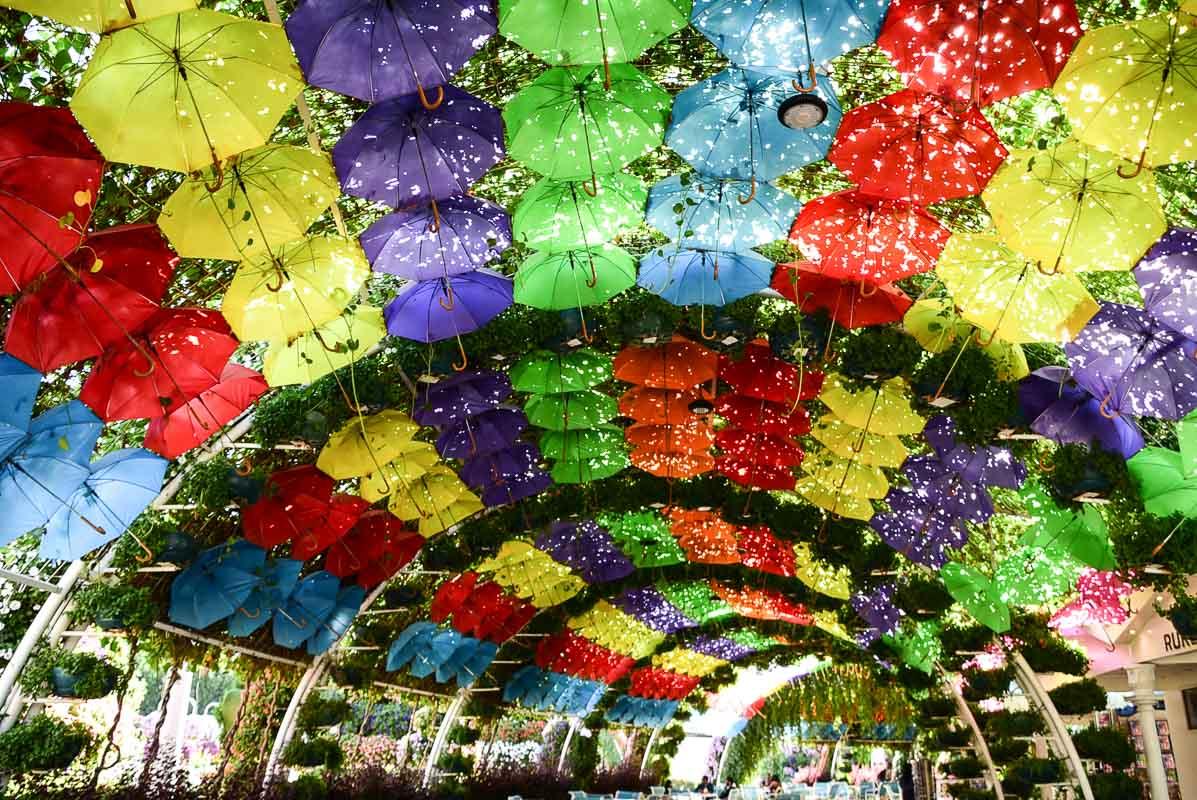 dubai miracle garden umbrella arches