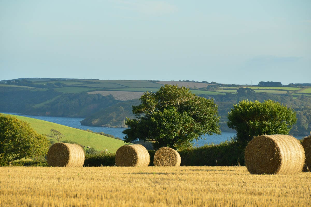 rolls of hay in cornwall