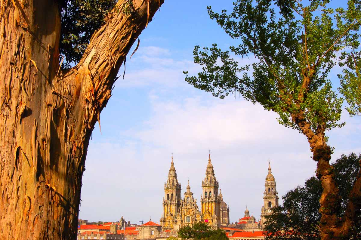 santiago de compostela view of cathedral from park