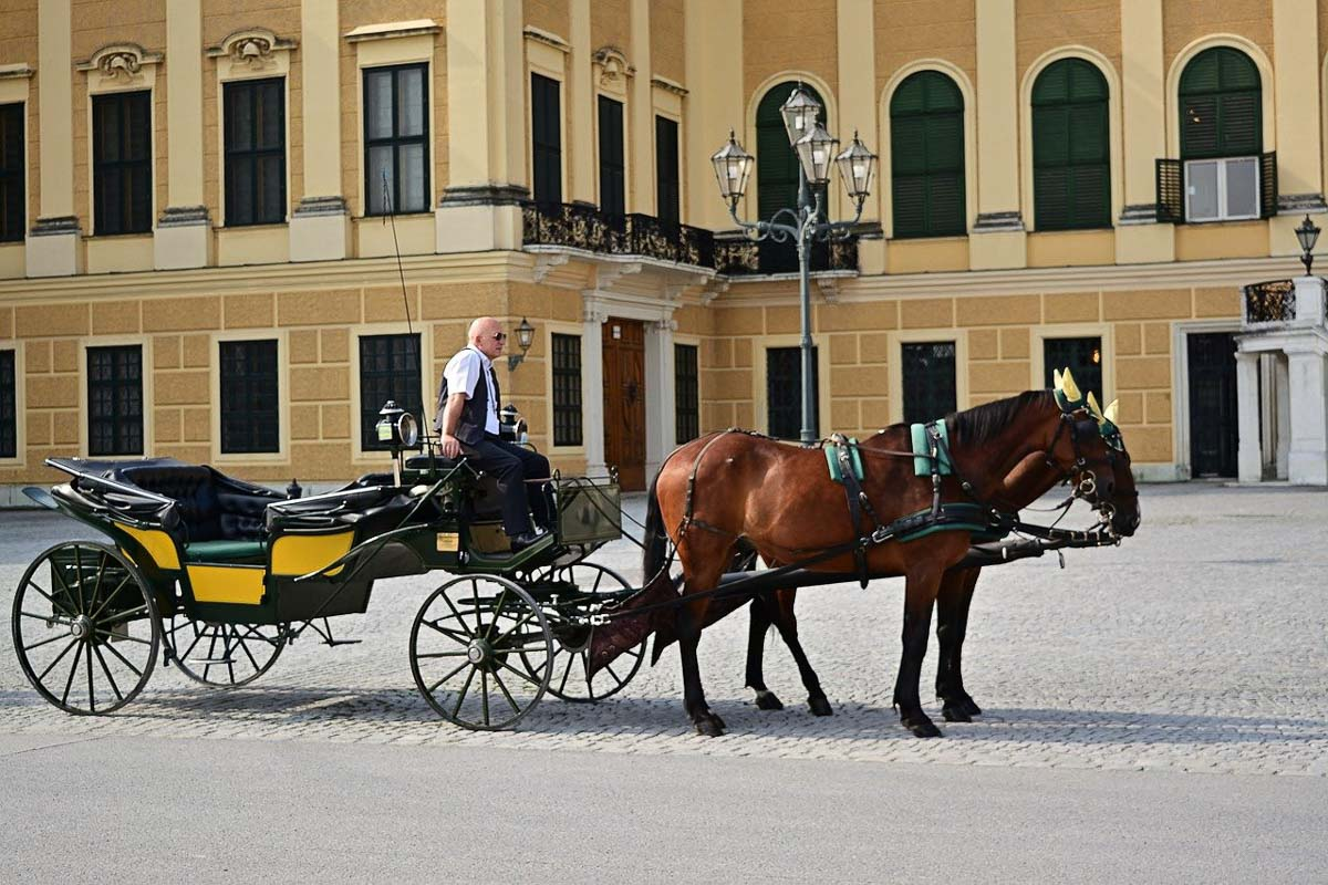 Horse and carriage at Schonbrunn Palace Austria