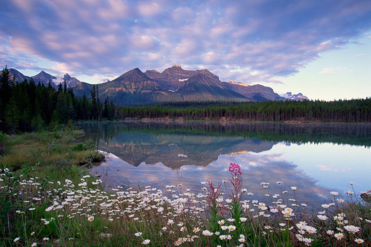 banff national park in spring